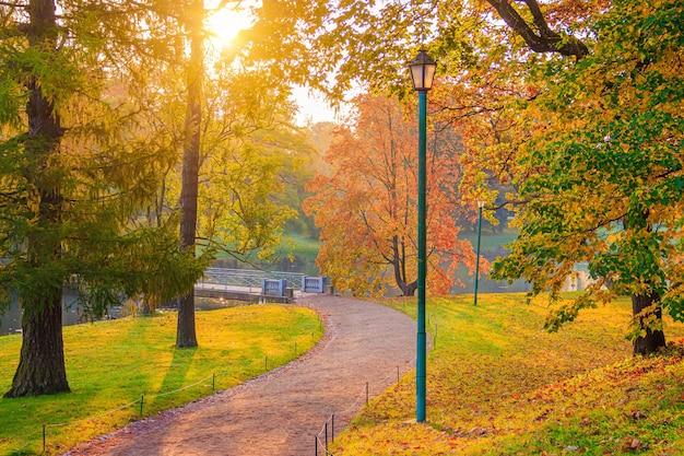 秋の公園の路地季節は秋9月10月11月