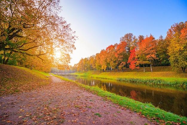 秋の公園の路地
