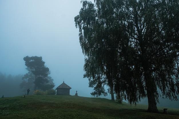 Городище савкино - одно из любимых мест известного русского поэта александра пушкина.