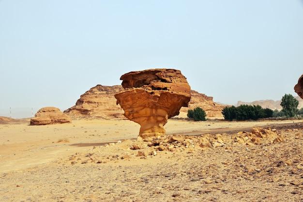 砂漠のアートロックはアルウラサウジアラビアを閉じます