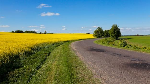 Асфальтированная дорога - небольшая асфальтированная дорога, находящаяся в сельской местности.