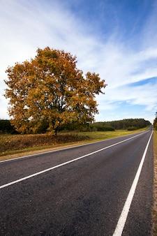 Асфальтированная дорога в осенний сезон.