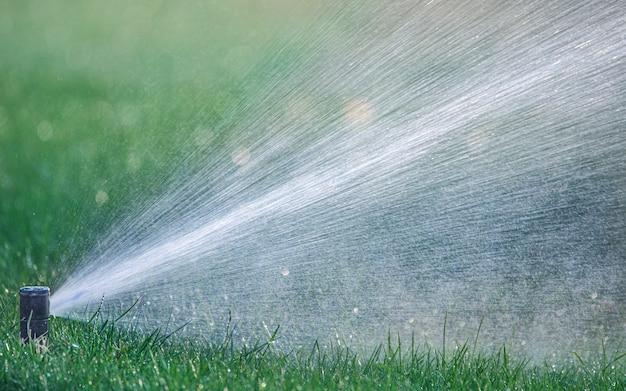 Автоматическая система полива орошает газонную траву.
