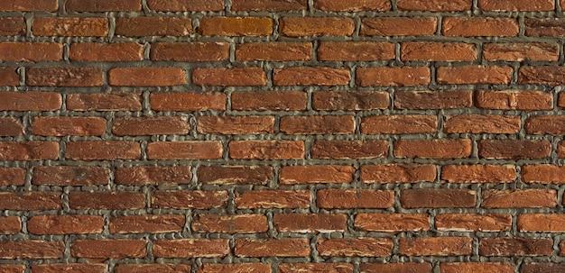 배경은 오래된 벽돌 벽입니다. 벽은 붉은 세라믹 벽돌로 만들어졌습니다