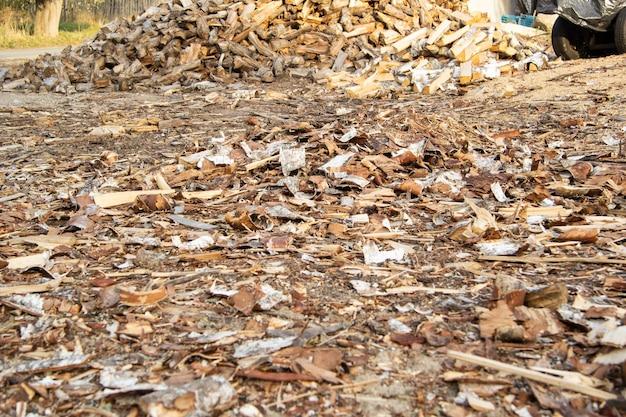 통나무에서 청소 된 자작 나무와 소나무의 껍질은 두꺼운 층으로 땅에 깔려 있습니다.