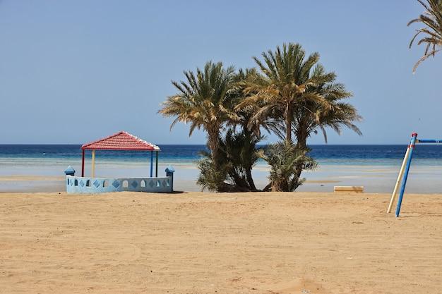 サウジアラビアの紅海のビーチ