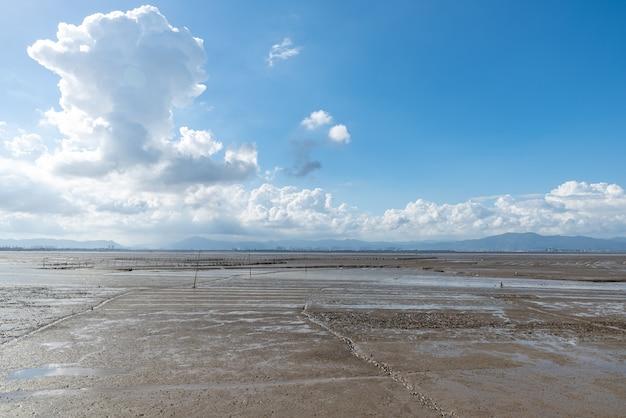푸른 하늘과 흰 구름 아래 해변, 비옥한 검은 땅