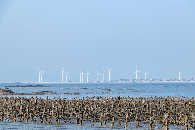 青い空の下のビーチ、海苔と牡蠣の養殖場がビーチにあります
