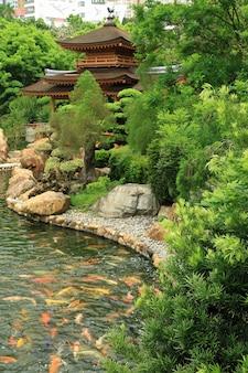 목조 주택 멋진 잉어 연못과 건물 배경이 있는 아름다운 정원