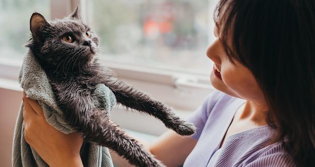 美しい少女は猫の毛皮を乾かしていた