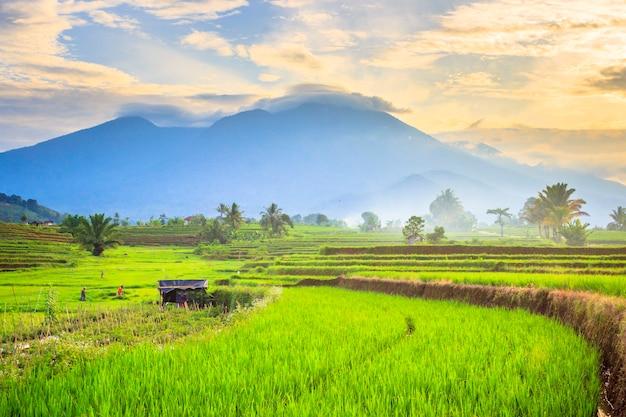 インドネシアの山岳地帯に昇る朝日と田んぼの朝の美しさ