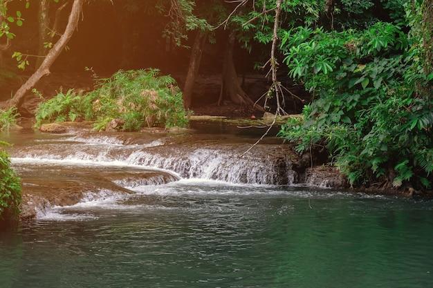 雨季の滝の美しさと木の湿気。
