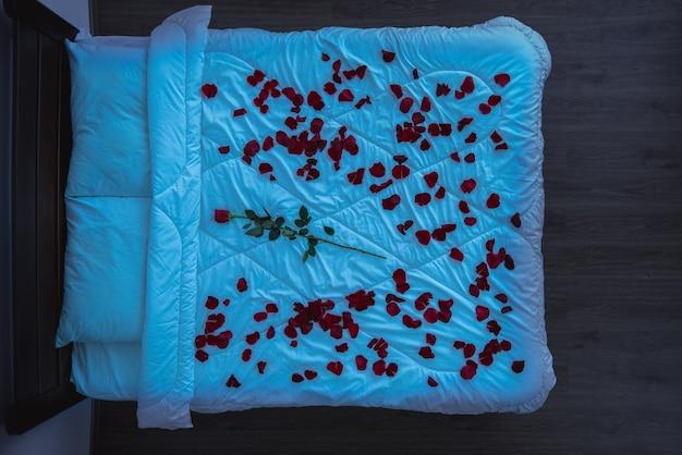 장미 꽃잎과 꽃이 있는 침대. 저녁 밤 시간, 위에서 보기