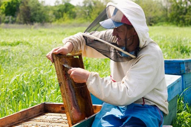 Пчеловод работает с медовыми рамками в качестве доказательства. концепция пчеловода.
