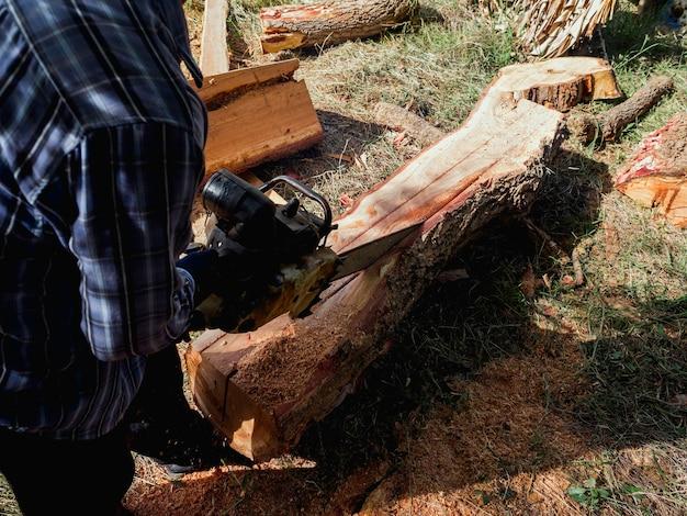 Большое бревно, деревья рубят старой бензопилой лесоруб, летят опилки. бензопила в движении по дереву.