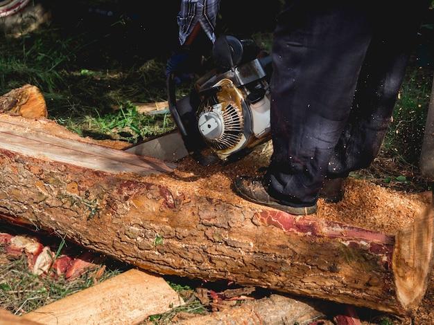 Большое бревно, деревья рубят старой бензопилой лесоруб, летят опилки. человек, стоящий на бревне. бензопила в движении по дереву.