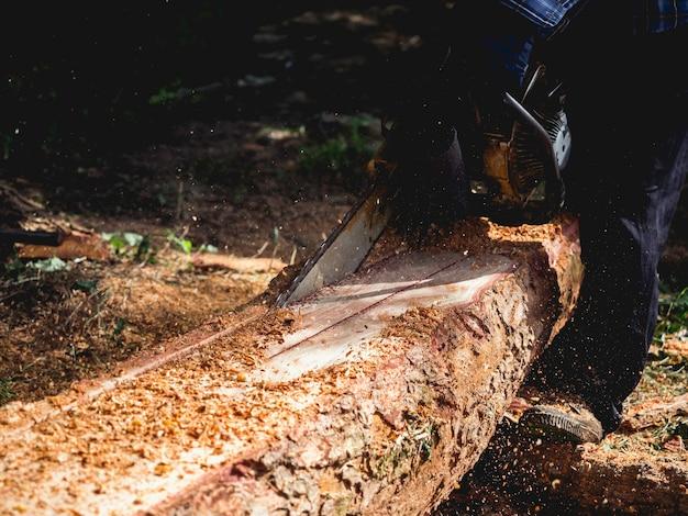Большое бревно, деревья рубят старой бензопилой лесоруб, опилки летают на зеленом фоне леса. бензопила в движении по дереву.