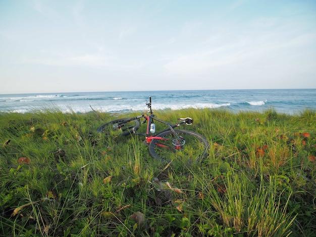 자전거는 푸른 잔디에 바다 옆에 누워 있습니다.
