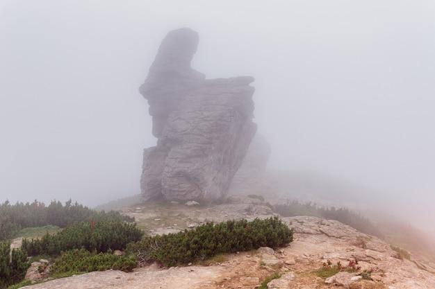 Причудливая форма горной вершины в карпатах