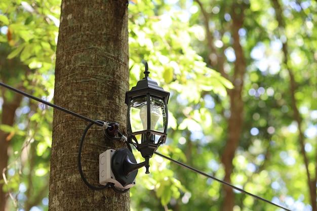 검은 램프는 태국의 큰 나무에 설치됩니다.