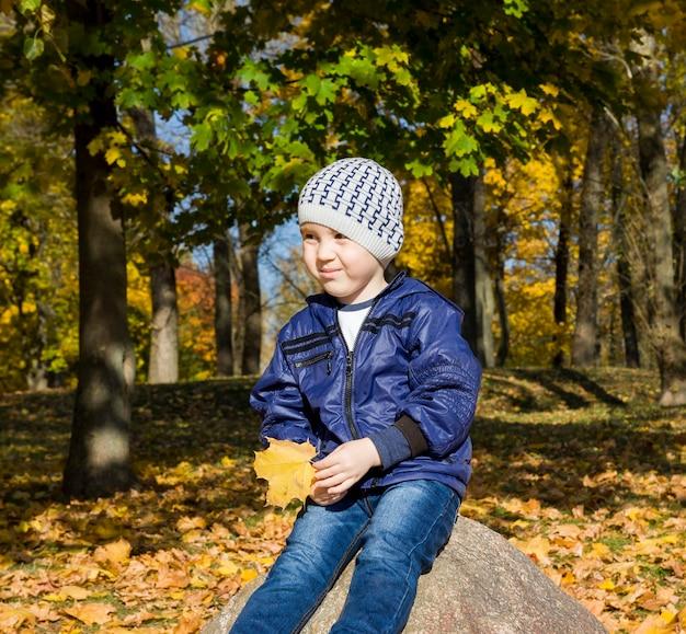 少年は秋の公園を散歩します