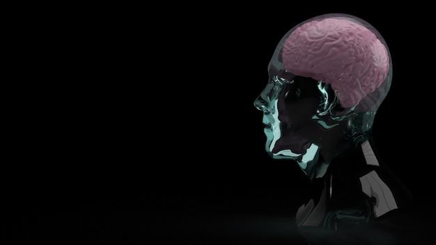 教育または科学コンテンツの3dレンダリングのためのクリスタルヘッド内の脳