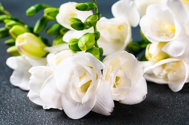 暗い表面に花とつぼみがある白いフリージアの枝。テーブルの上の花。フリージアの花。結婚式の花。