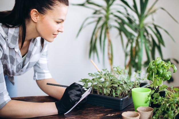 Выращивание комнатных растений. концепция посадки рассады садовыми инструментами.