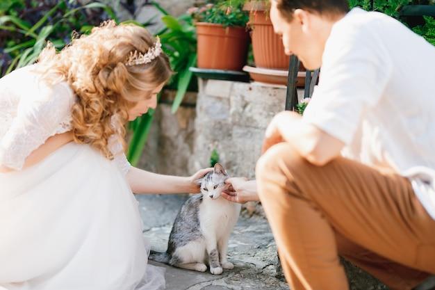 Жених и невеста сидят на корточках и гладят серую кошку на улице в старом городе пераста.