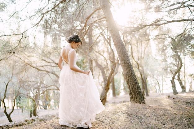 신부는 올리브 과수원 뒷모습에서 아름다운 나무 사이를 걷는다