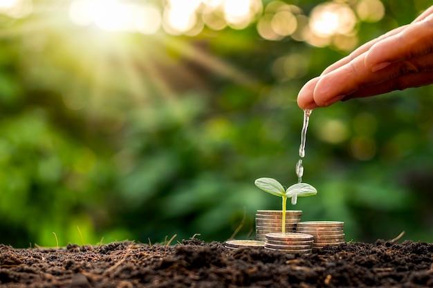 Рука делового человека поливает растения, растущие на куче монет, уложенных на землю. идеи финансового роста и управления бизнесом.