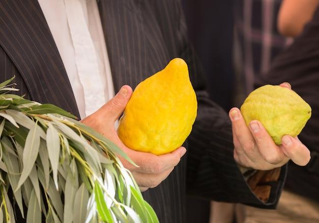 Покупатель выбирает цитрусовые этро и иву древний еврейский осенний праздник суккот.