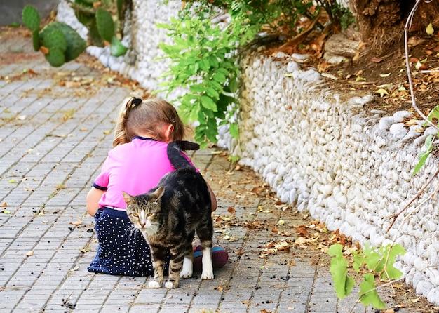 猫は通りに座っている女の子に寄り添いました。