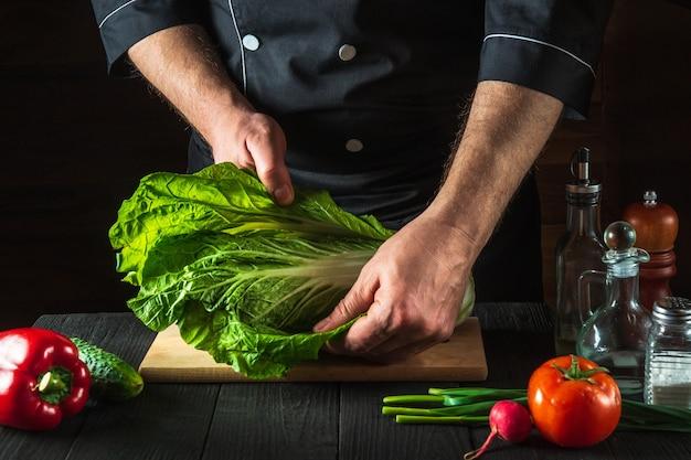 シェフまたは料理人が新鮮な白菜のサラダを作ります。レストランの厨房でスライスする準備。野菜ダイエットのアイデア。