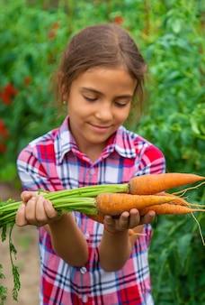 아이는 정원에서 손에 당근을 들고 있습니다. 선택적 초점입니다. 자연.