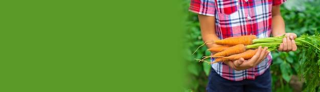 子供は庭でニンジンを手に持っています。セレクティブフォーカス。