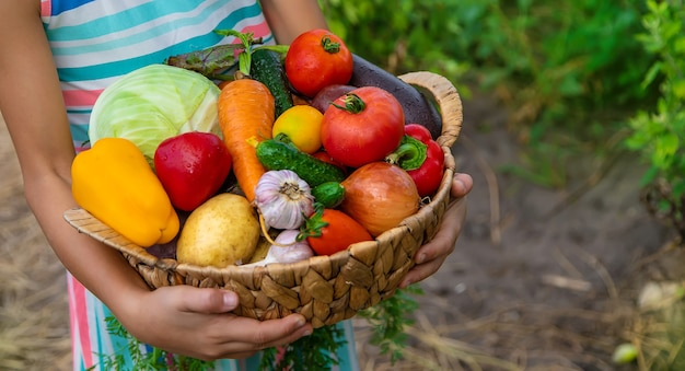 子供は庭で野菜を手に持っています。セレクティブフォーカス。子供。