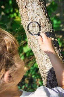 Ребенок смотрит в увеличительное стекло. увеличение. выборочный фокус.