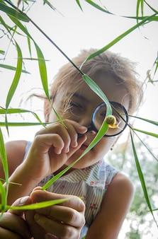 아이는 돋보기를 통해 달팽이를 본다. 선택적 초점. 자연.