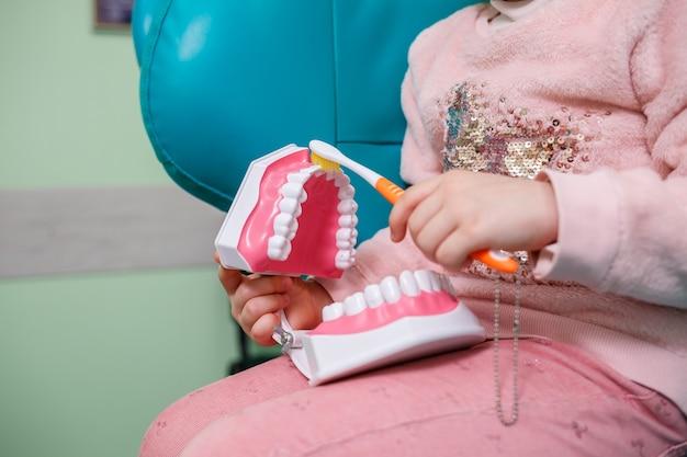 子供は歯科医院に座って、人工の顎を手に持って歯を磨きます