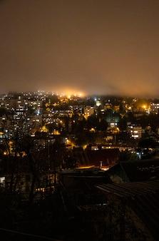 街は真夜中に描かれています。夜は大都会の明かり。山の上の街