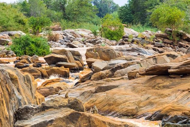 Побережье реки тана между парками меру и кора африка