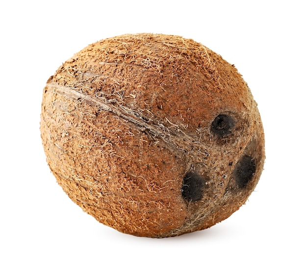 ココナッツは白の上に横たわっています。孤立