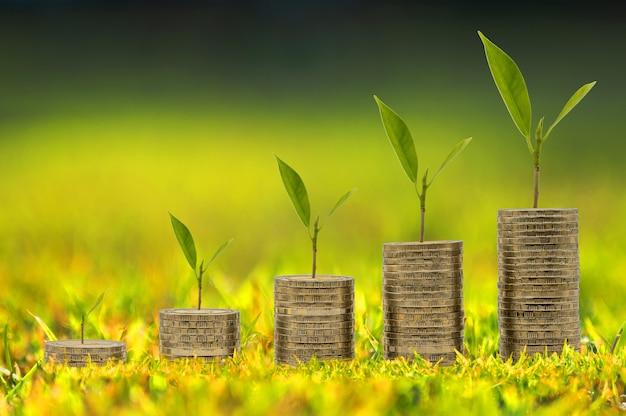 동전은 경제를 위한 돈 절약 또는 재무 계획 아이디어를 나타내는 나무 성장과 함께 기둥에 누적됩니다.