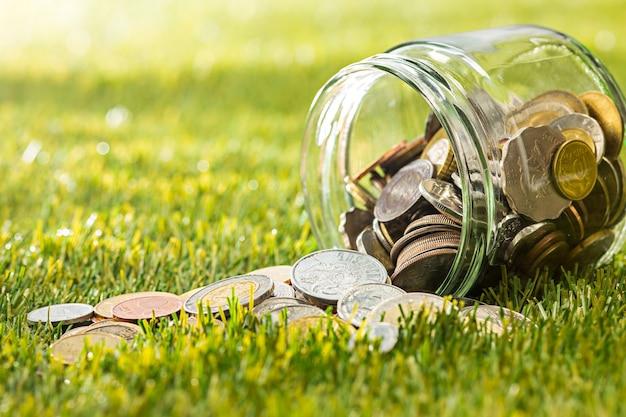 Монеты в стеклянной банке для денег на зеленой траве