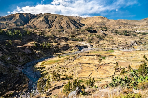 페루의 협곡이 있는 콜카 강