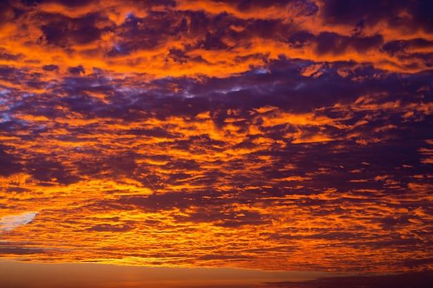 Цвета пылающего заката в небе.