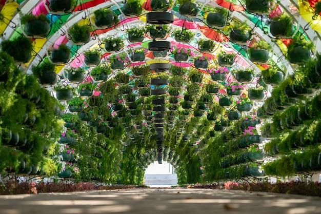 Красочная арка с цветами и зонтиками на вокзале корниш. доха, катар.