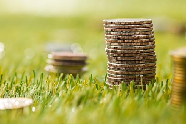 草の上のコインの列