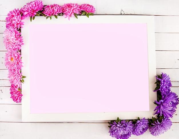 Композиция прямоугольная из цветов астры на белом фоне концепция осень-лето